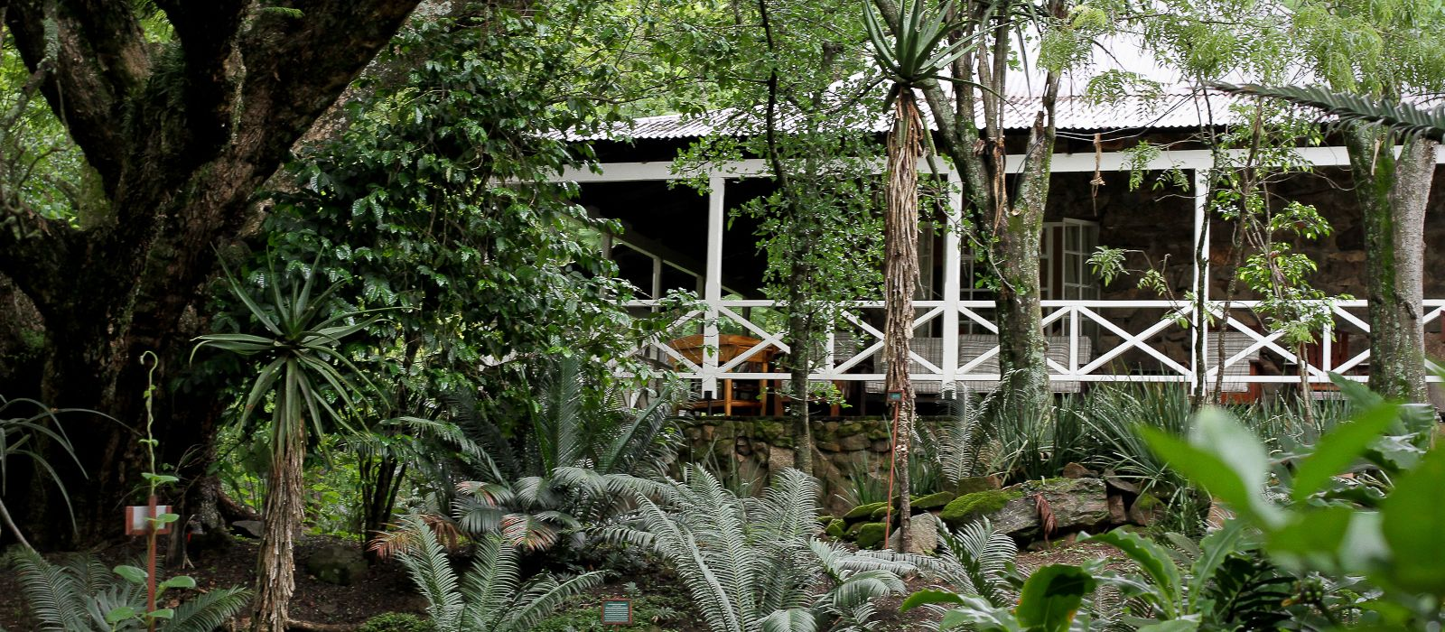 Hotel Reilly's Rock Hilltop Lodge Swaziland