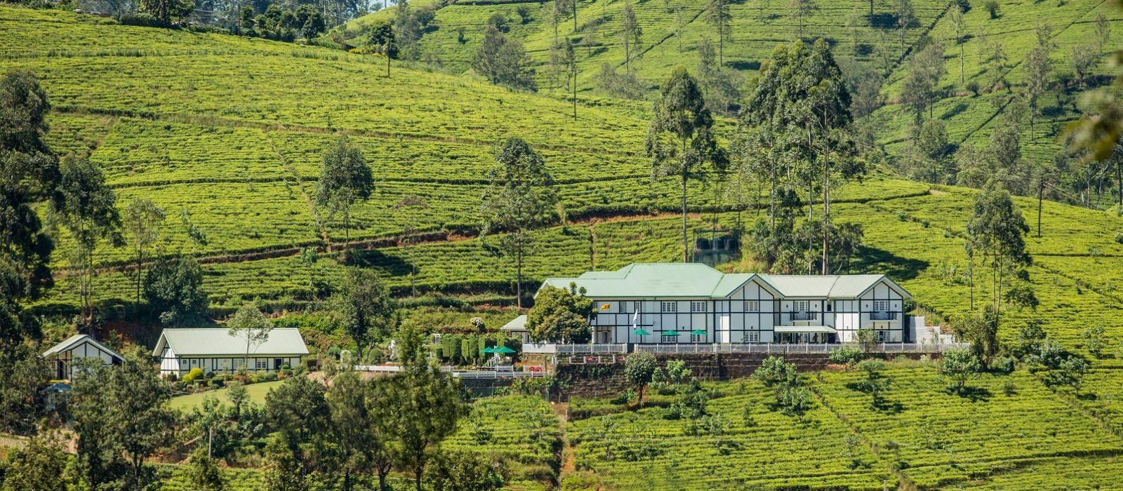 Enchanting Sands and Tea Trails of Sri Lanka Tour Trip 5