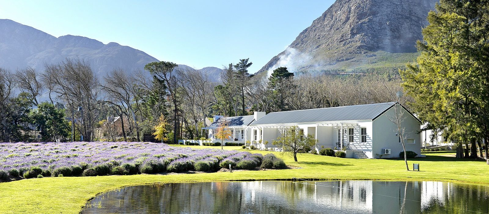 Hotel Lavender Farm Guest House South Africa