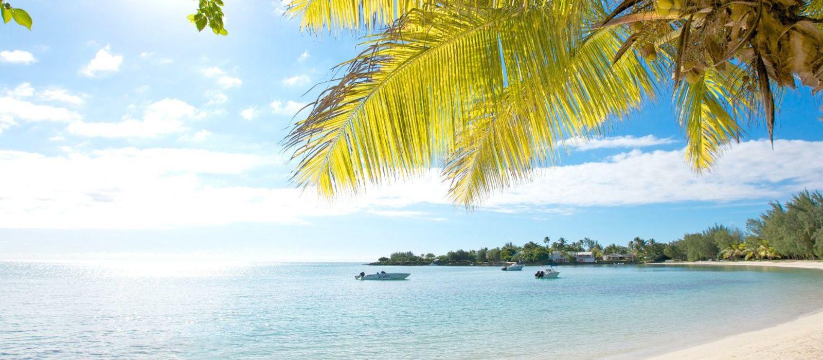 Südafrika & Mauritius: Wilde Tiere, weites Land & tropische Träume Urlaub 5