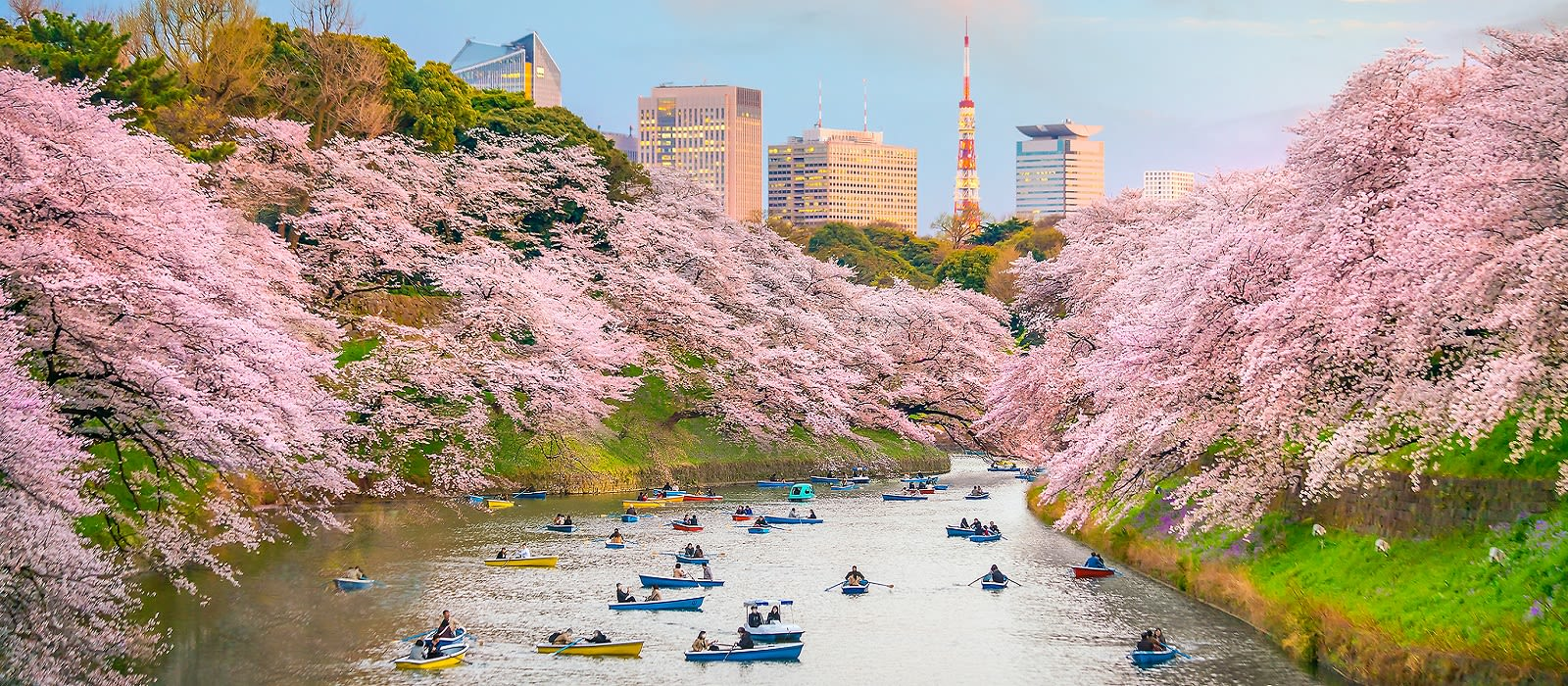 Exclusive Travel Tips For Your Destination Tokyo In Japan