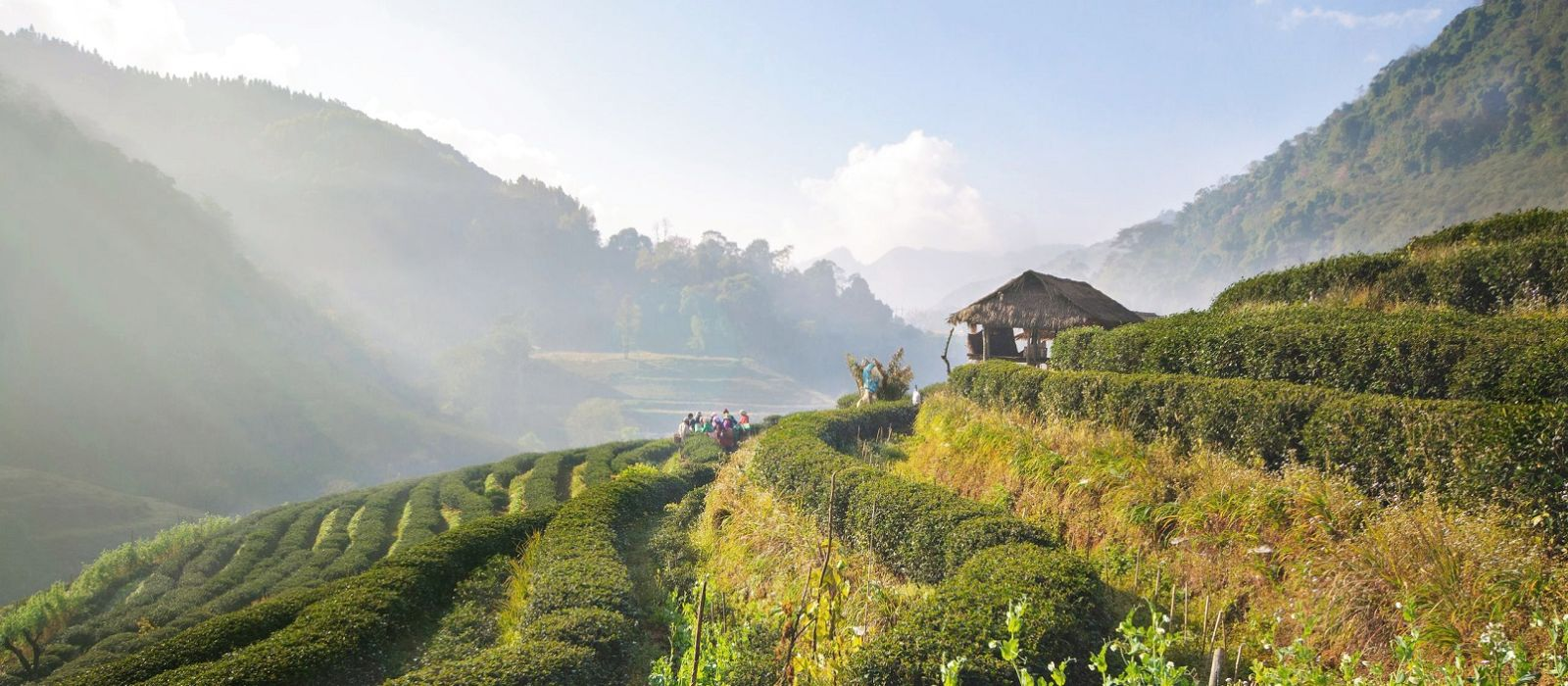 Thailand's Northern Heart and Koh Samui Beach Tour Trip 4