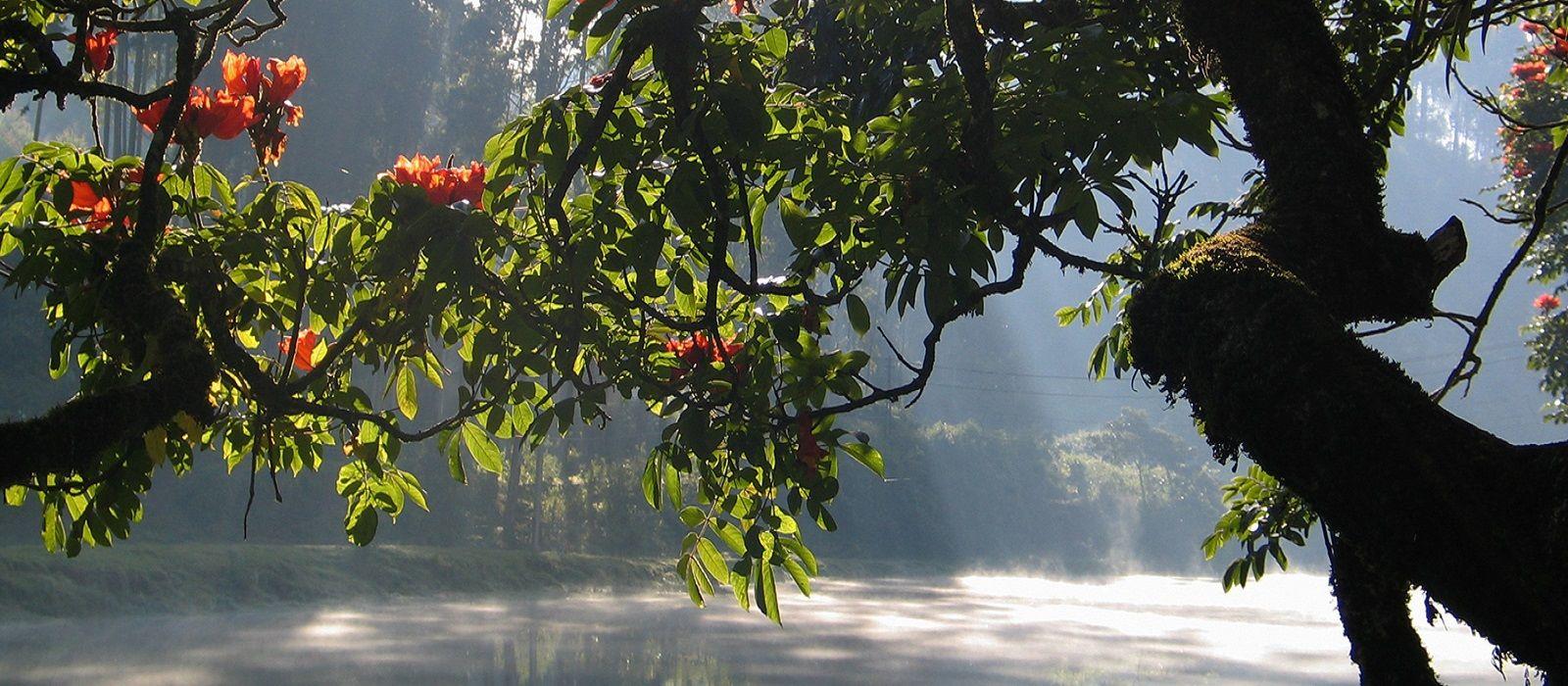 Highlights of Kerala and Dubai Tour Trip 5