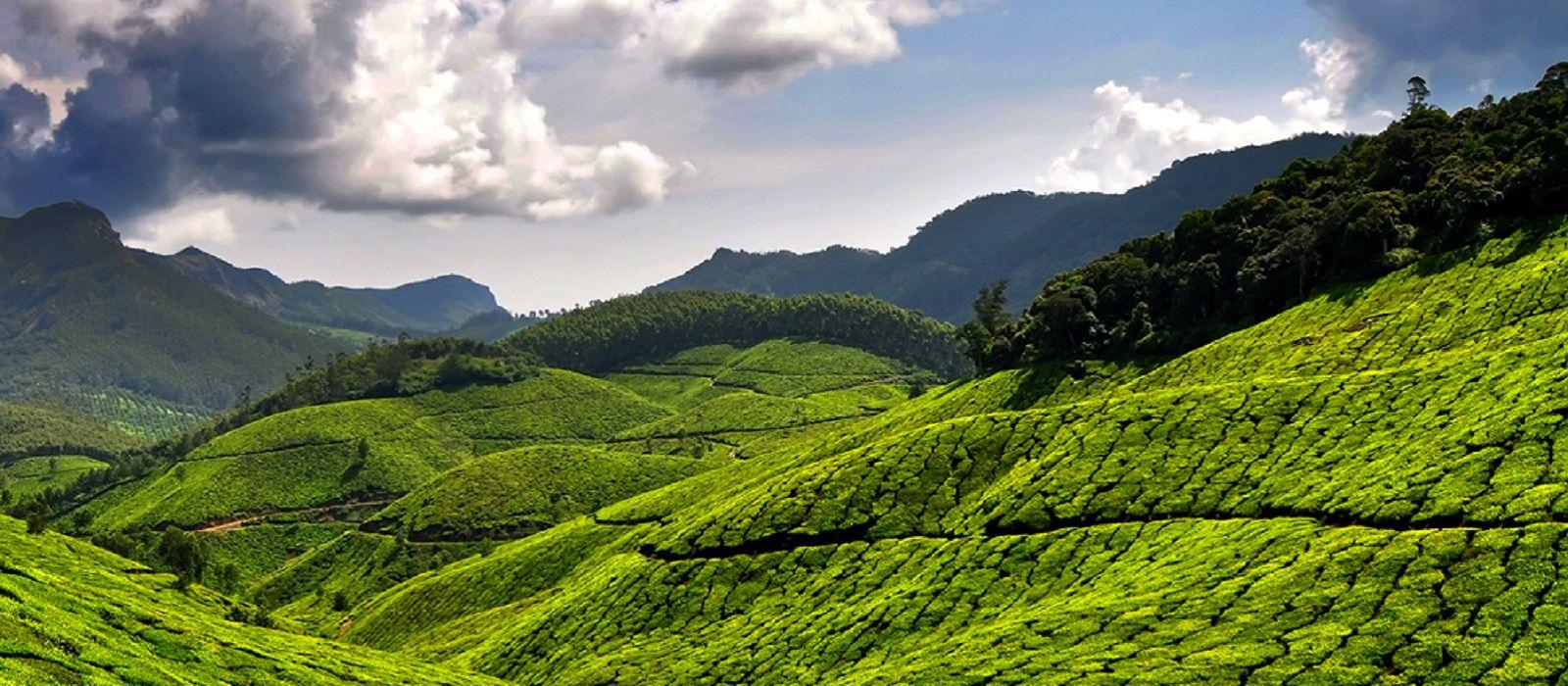 Highlights of Kerala & Dubai Tour Trip 1