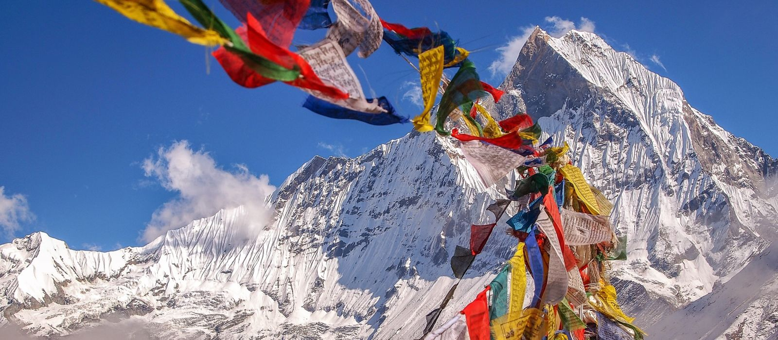 Nepal and North India: Culture, Adventure and Wildlife Tour Trip 1