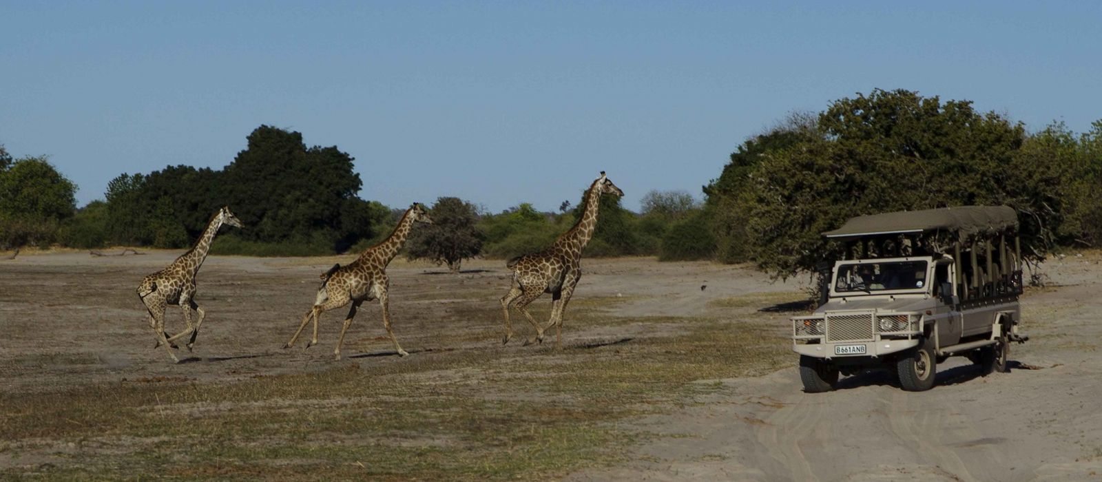 Southern Africa: Wildlife, Rovos Luxury and Cape Town Tour Trip 5