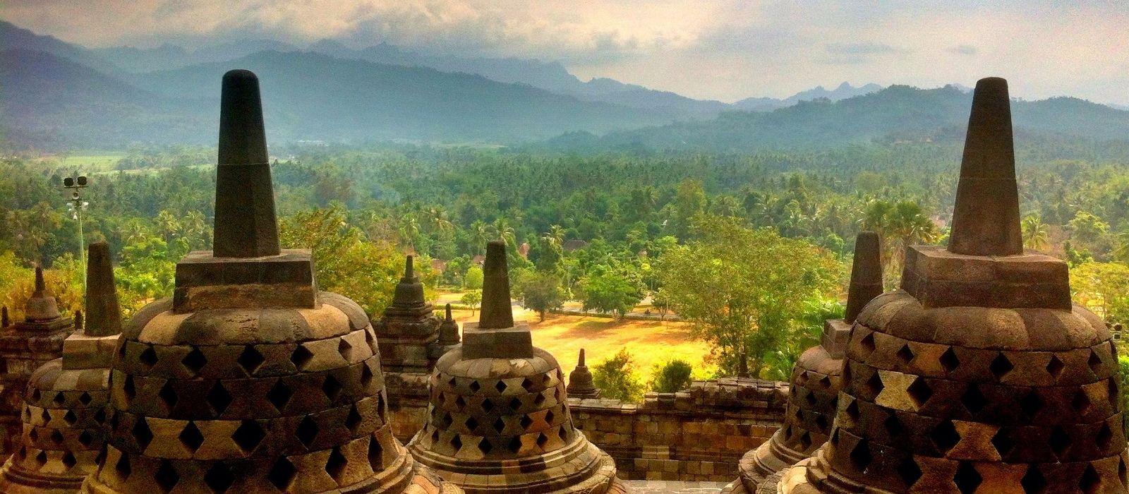 Orangutans und Tempel von Indonesien Urlaub 4