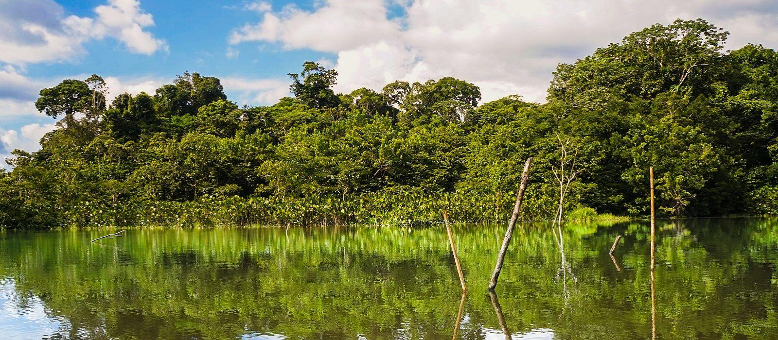 Destination Yasuni Ecuador/Galapagos
