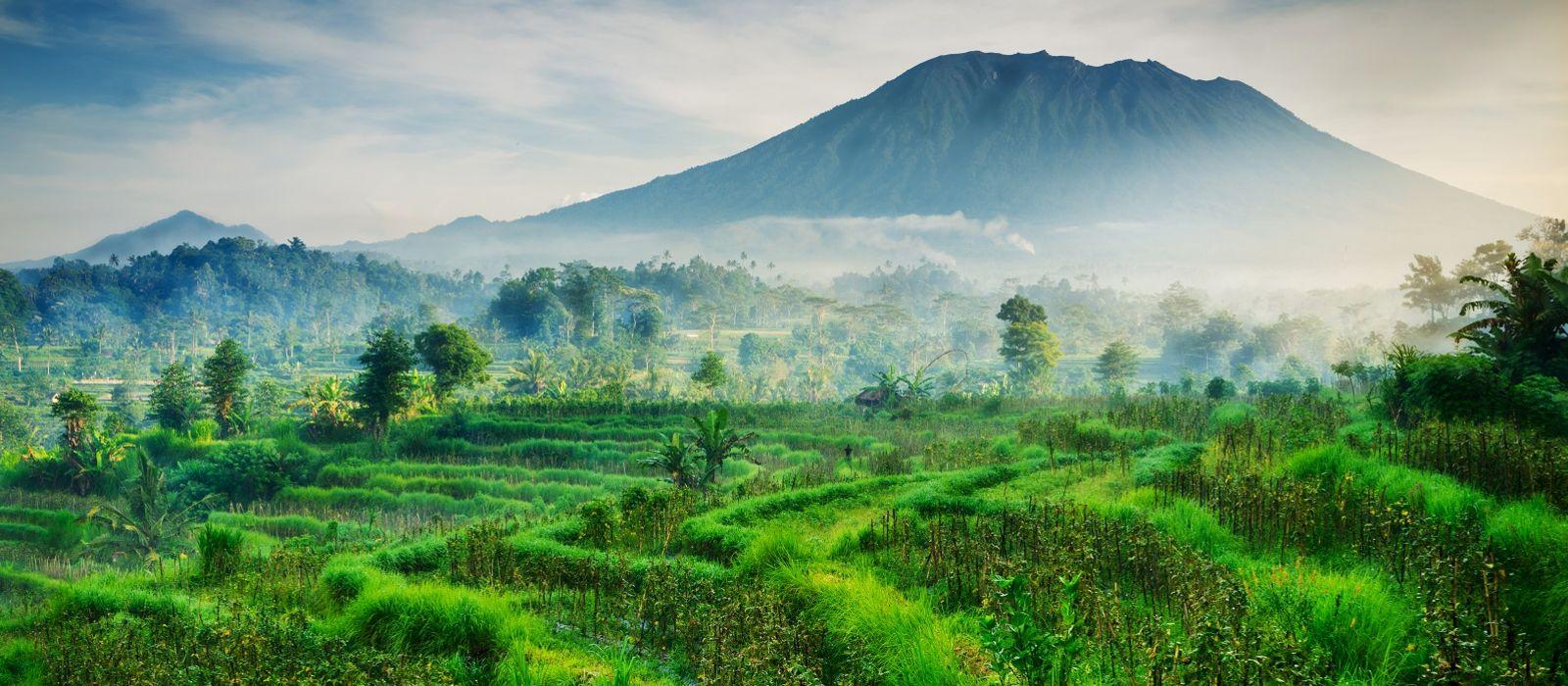 Indonesia: Island Hopping and Bali Tour Trip 3