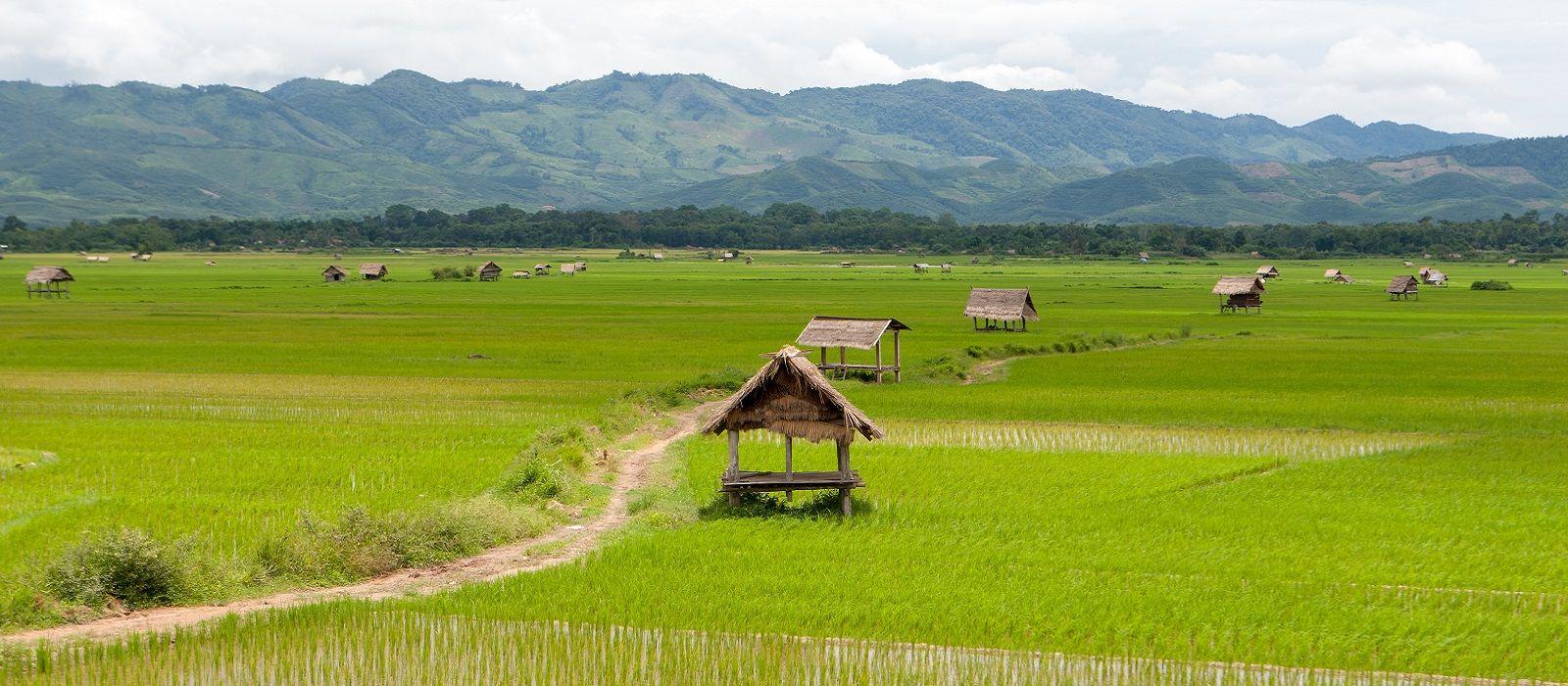 Destination Luang Namtha Laos