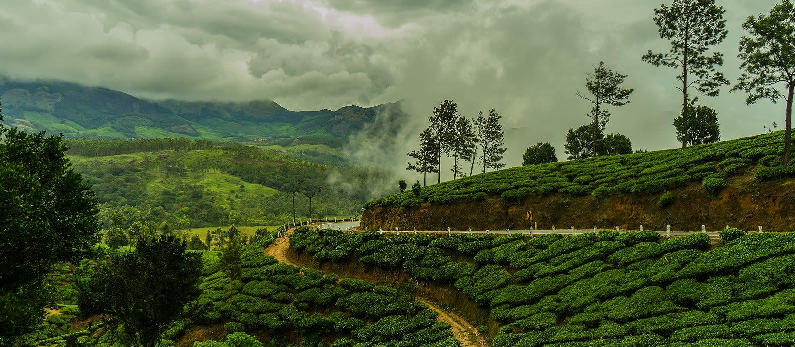 Klassische Reise nach Kerala: Backwaters und wilde Natur Urlaub 5