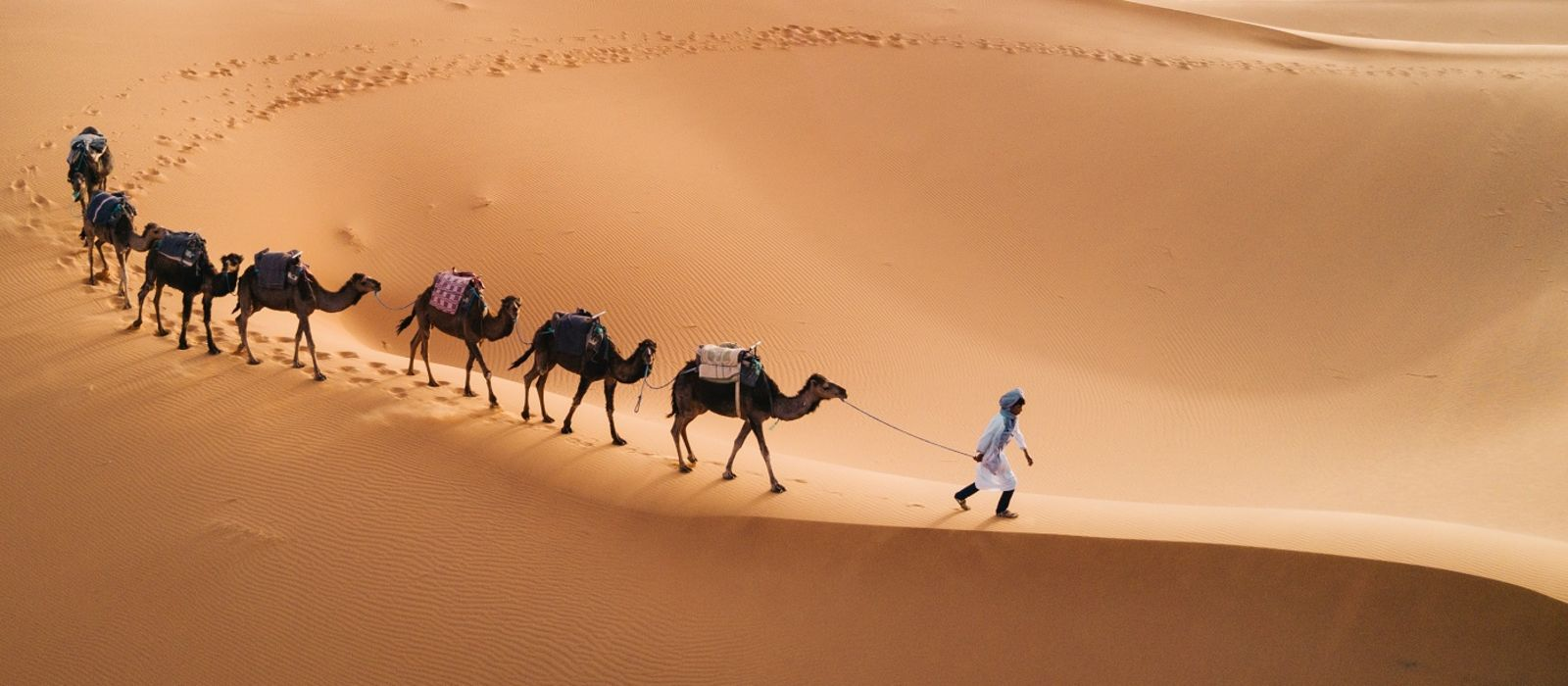 Morocco Tours & Trips 1