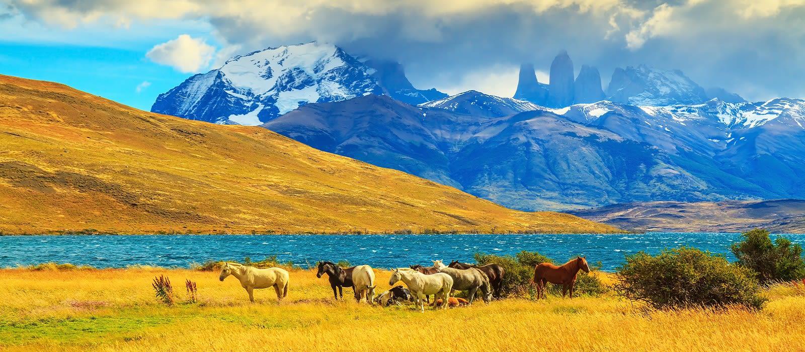 Die unberührte Schönheit Patagoniens & Abstecher in die Antarktis Urlaub 2