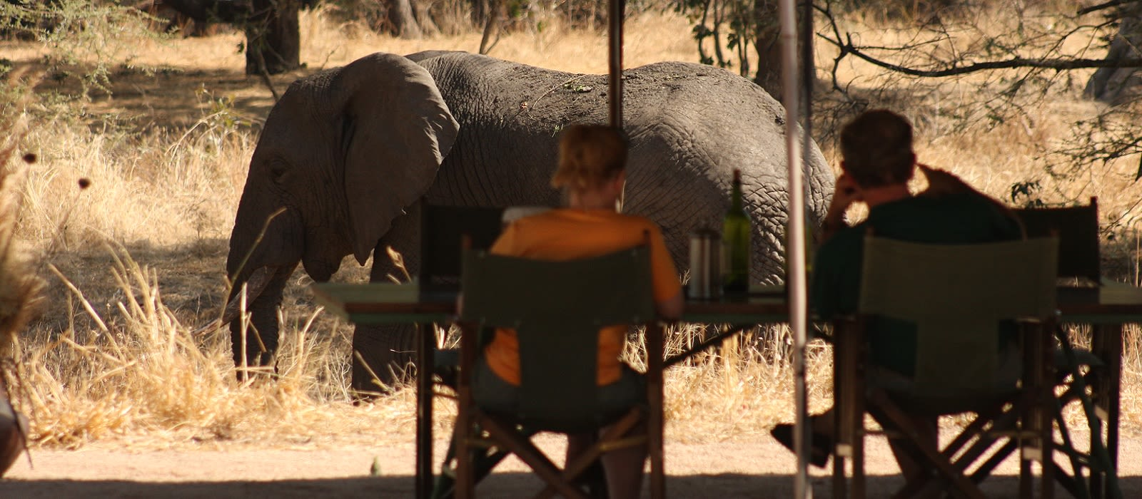 Tansania – Safari-Abenteuer & Strandparadies Urlaub 4