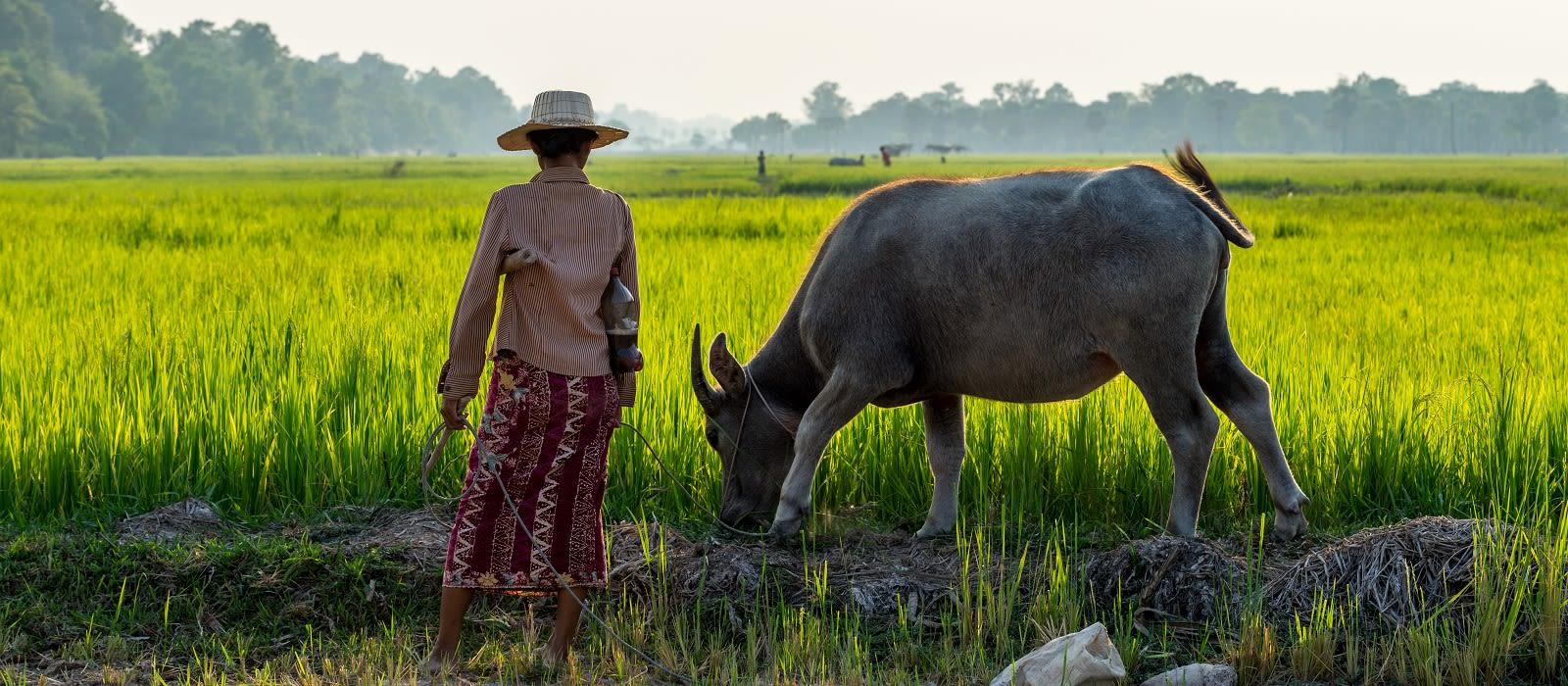 Classsic Cambodia Tour Trip 4