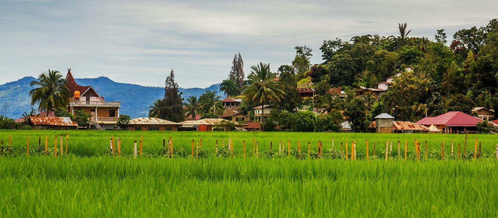 Die Highlights von Sulawesi und Sumatra Urlaub 1