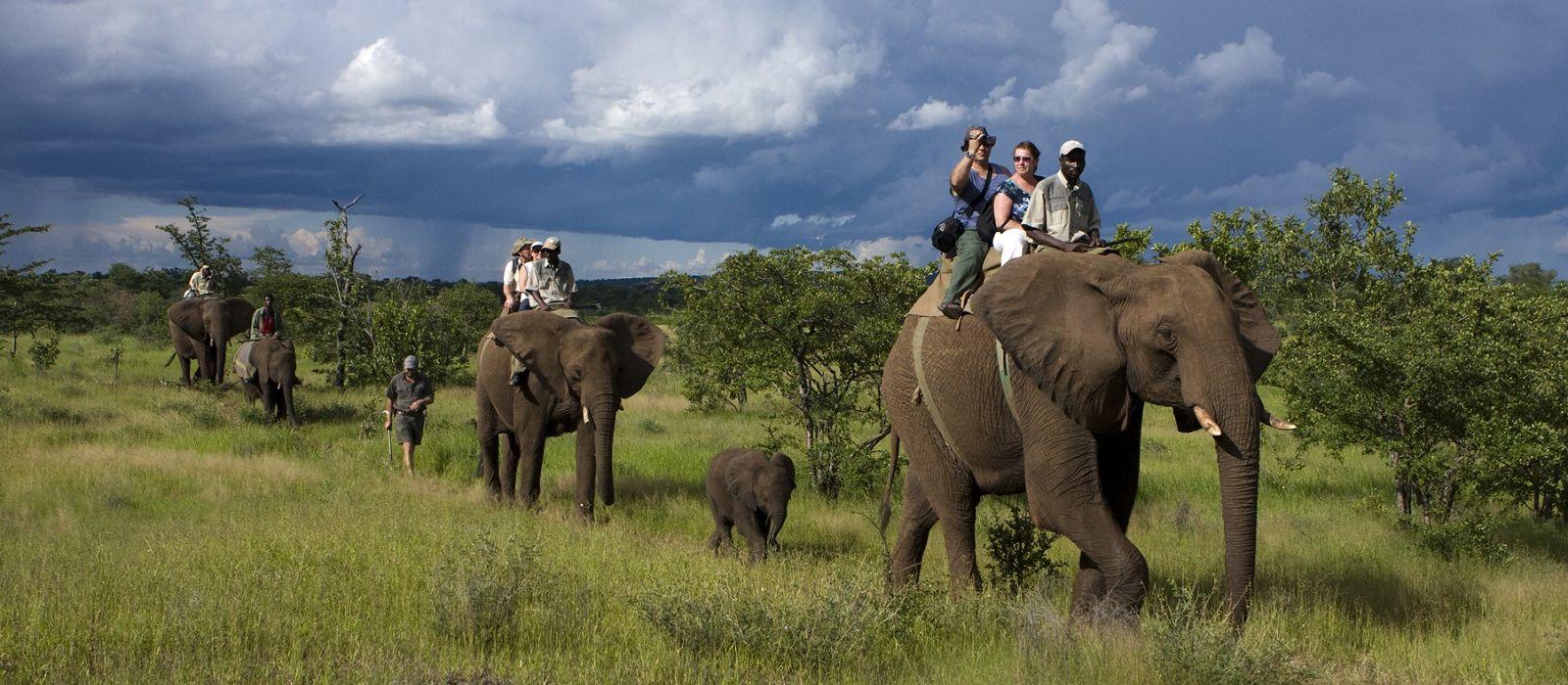 Namibia, Botswana & Simbabwe: Selbstfahrer-Reise via Caprivi Urlaub 4