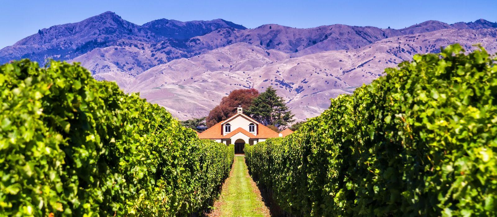 Neuseeland: Kunst, Wein und Strand Urlaub 4