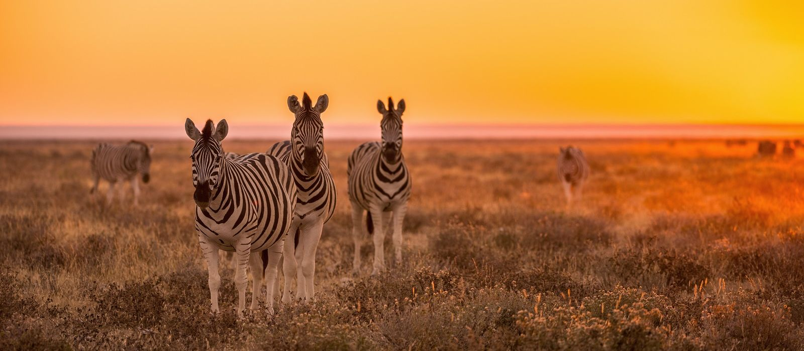 Selbstfahrer-Reise nach Südafrika, Namibia & Simbabwe: Nord Kap via Caprivi und Viktoriafälle Urlaub 4