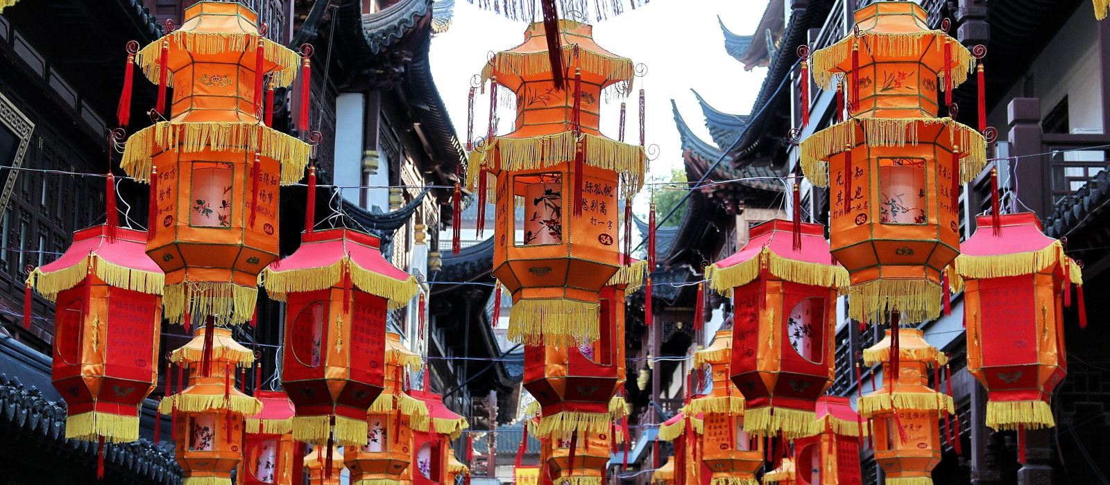 Essential China: From Beijing to Shanghai Tour Trip 5