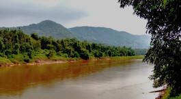 Reiseziel Thattekad Südindien