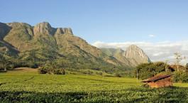 Reiseziel Mulanje Malawi