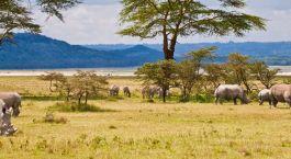 Reiseziel Lake Baringo & Lake Bogoria Kenia