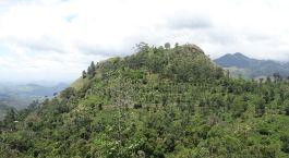 Reiseziel Ella Sri Lanka
