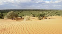 Destination Kalahari Desert South Africa