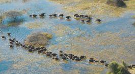 Reiseziel Serowe Botswana
