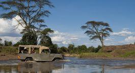 Reiseziel Laikipia – Ol Pejeta / Solio Kenia