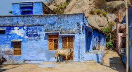 Destination Narlai North India