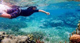 Destination Ambergris Caye Island Belize