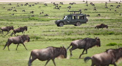 Example private tour: Tanzania and Kenya Highlights