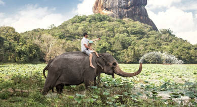 Example private tour: Sri Lanka's Wild Side and Blissful Beaches