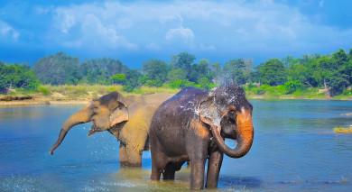 Empfohlene Individualreise, Rundreise: Höhepunkte von Nepal & Bhutan