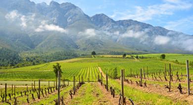 Empfohlene Individualreise, Rundreise: Südafrika: Höhepunkte & unbekannte Juwelen am Westkap