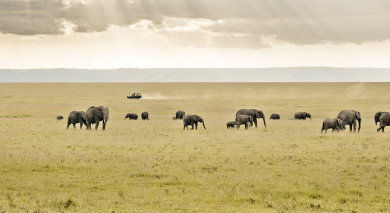 Example private tour: Highlights of Kenya, Rwanda and South Africa