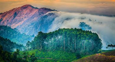 Empfohlene Individualreise, Rundreise: Kerala Rundreise – Tempel, Tee & Traditionen