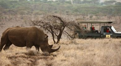 Example private tour: Wings Over Kenya