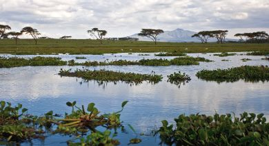 Example private tour: Kenya: Where Few Tread