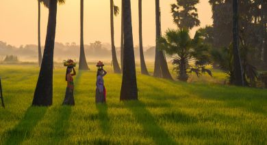 Example private tour: Spotlight on South India