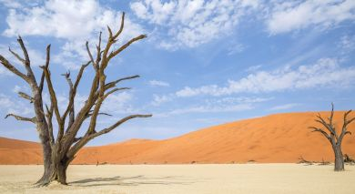Example private tour: Namibia: Highlights of the North