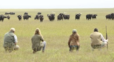 Empfohlene Individualreise, Rundreise: Kenia: Wandersafari Rundreise