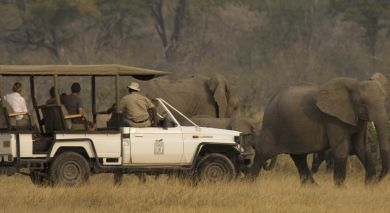 Example private tour: Botswana and Zambia: Luxury Safari and Victoria Falls