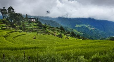 Example private tour: Luxury Bhutan and Thailand Paradise Islands