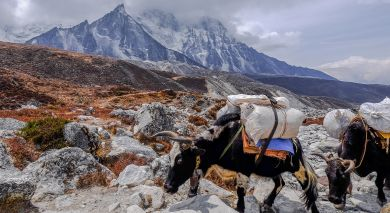 Example private tour: Grand Tour of Tibet and Nepal