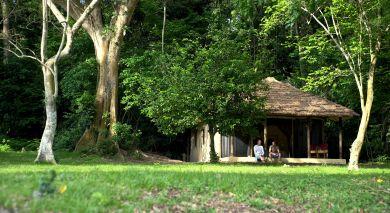 Example private tour: Lakeside Luxury and Wildlife in Tanzania
