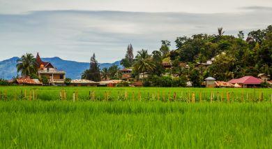 Empfohlene Individualreise, Rundreise: Die Highlights von Sulawesi und Sumatra