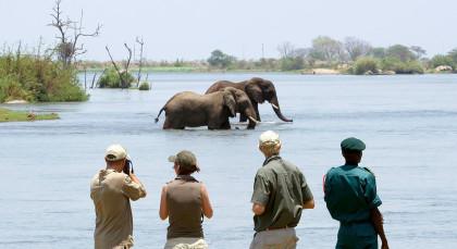 Majete Wildschutzgebiet in Malawi